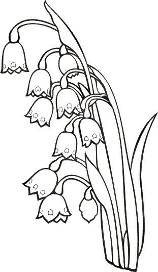 T T Lilly Of The Valley Snow Drop Embroidery Flowers Pattern Flower Coloring Pages Flower Drawing
