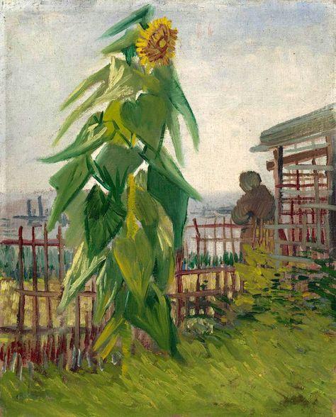 Vincent Van Gogh 1853 1890 Allotment With Sunflower 1887 Oil On Canvas 42 5 X 35 5 Cm Arte Van Gogh Pinturas E Pintores