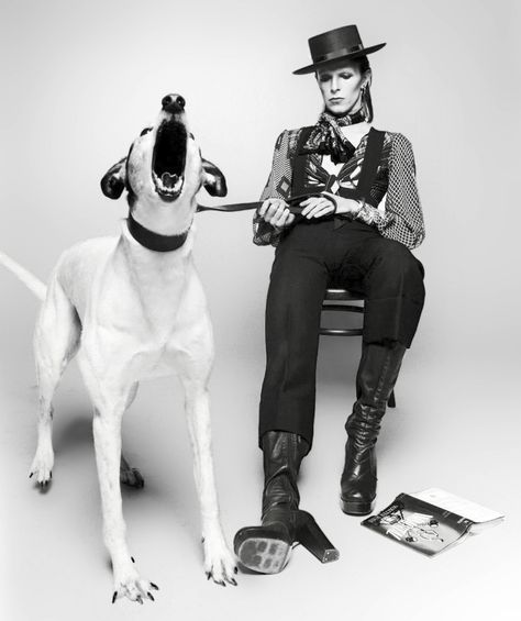 In this shoot, the dog was supposed to sit calmly but suddenly jumped up and barked violently. Bowie didn't flinch so they got this shot!