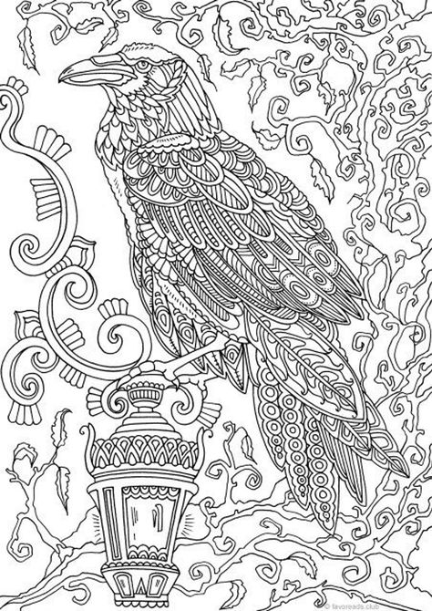 Holidays - Raven - Printable Adult Coloring Pages from Favoreads