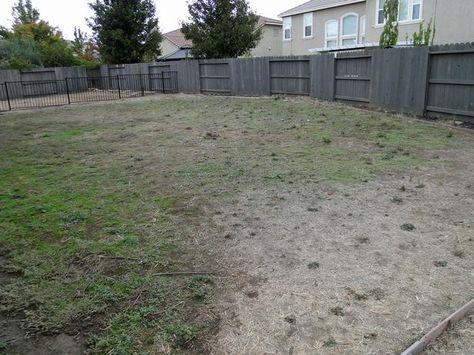 edb16c2088cae033692a5a5a8ee8c421 backyard retreat backyard landscaping
