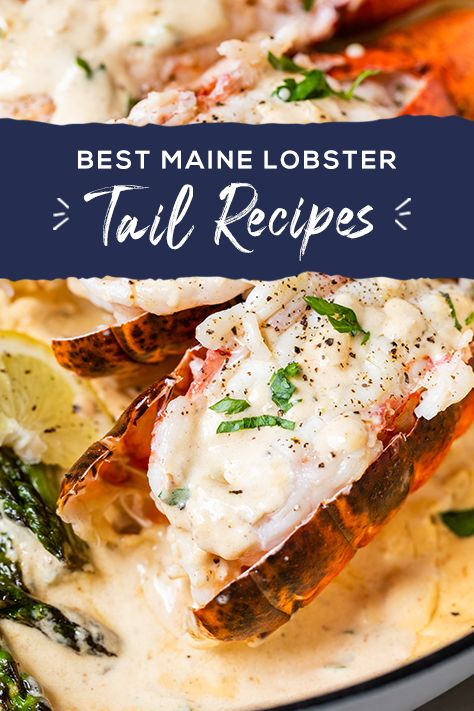 For many, the tail is the favorite part of the lobster, and since it can be served up so many ways, you can try a new version every day! Check out our tips, tricks, and recipes for preparing delicious Maine Lobsters tails.  Lobster Dishes, Lobster Recipes, Fish Dishes, Fish Recipes, Seafood Recipes, Great Recipes, Cooking Recipes, Favorite Recipes, Healthy Recipes