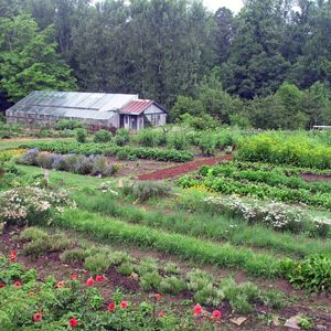 Asheville, North Carolina | Travel | Pinterest | Asheville North Carolina,  Asheville And North Carolina
