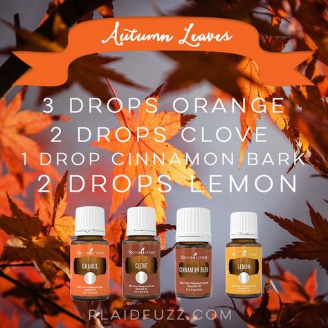Bring the season inside with these fall essential oil diffuser recipes. From crispy mornings to apple pie these recipes will make your house smell amazing! Fall Essential Oils, Essential Oil Diffuser Blends, Essential Oil Uses, Young Living Essential Oils, Diffuser Recipes, Aromatherapy Oils, Yl Oils, Aromatherapy Recipes, Young Living Oils