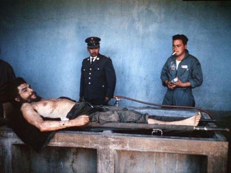 El cadaver de Ernesto  - würmer in der küche