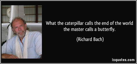 Top quotes by Richard Bach-https://s-media-cache-ak0.pinimg.com/474x/ed/cc/9d/edcc9dbfd0bd7bf8feb58cf6d3b28813.jpg