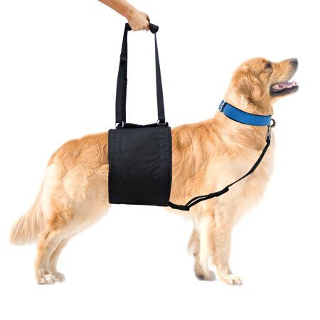 Buy Pet Supplies Online Such As Pet Accessories Pet Toys Other Pet Products At Low Prices On Ubuy Denmark The Best Pet Supply Store With A Huge Range Of Pe