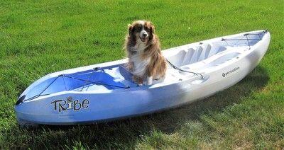 Pin On Kayak Equipment Gear