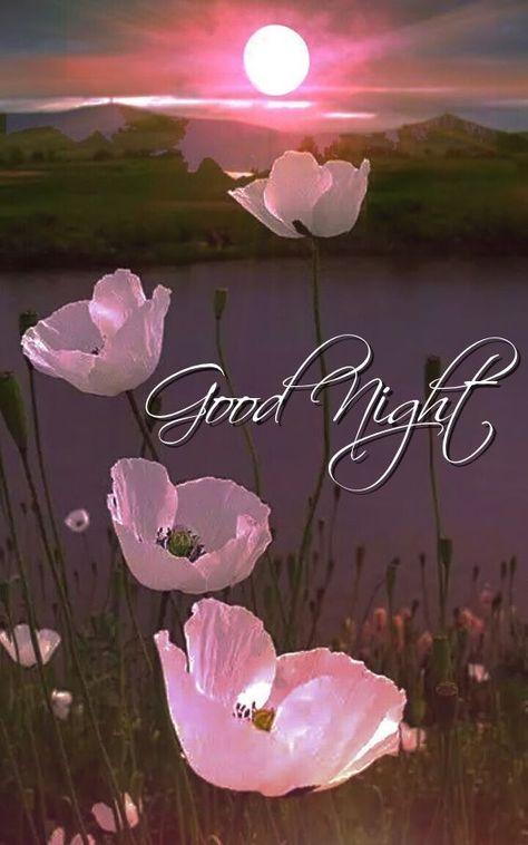 Goodnight sister sweet dreams 💖💗🌜🌜🌧☔💐