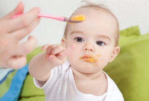 Ñam ñam: Manual para alimentar a un pequeño onmívoro