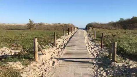 Auf dem Holzweg geht's zum Meeresrauschen an die Ostsee #Ostsee #Urlaub #Ferien #Strand #Strandzugang #Idylle #maritim #Traum