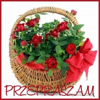 Podobny Obraz Same Day Flower Delivery Flower Delivery Flowers Delivered