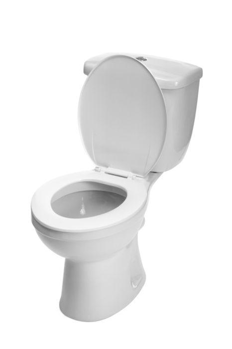 Homepage Toilet Installation Toilet Repair Toilet Bowl