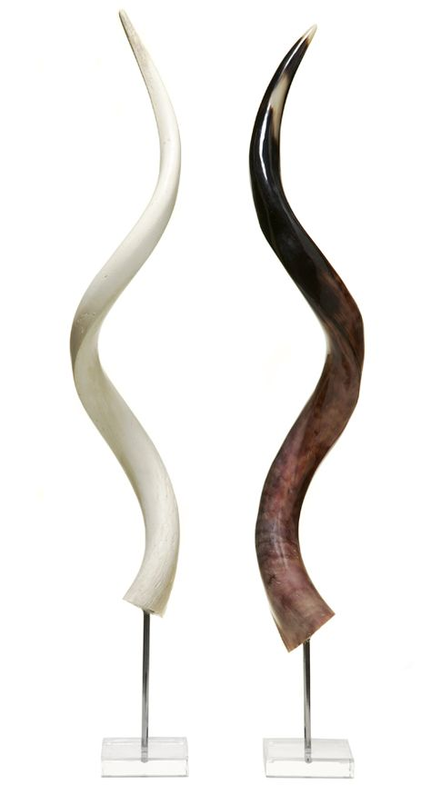 African antelope polished horn stand Polished kudu outer horn with metal stand
