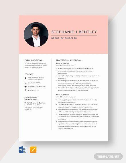 Board Of Directors Resume Beautiful Board Of Directors Report Template Word Cv Template Word Resume Template Word Word Doc