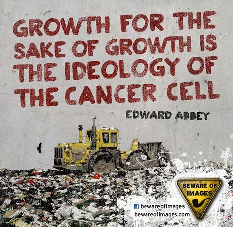 Top quotes by Edward Abbey-https://s-media-cache-ak0.pinimg.com/474x/ee/14/f5/ee14f5db399435e5d19e142683821eed.jpg