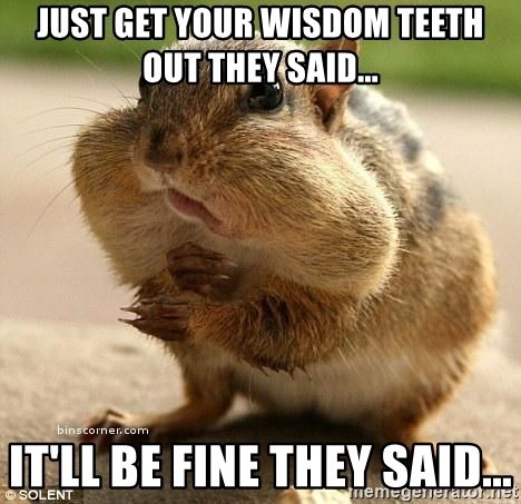 Chipmunk Face After Wisdom Teeth Surgery Meme Wisdom Teeth Funny Getting Wisdom Teeth Out Wisdom Teeth Meme