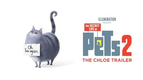 We Invite You To Have A Ball Watch The Chloe Trailer For Thesecretlifeofpets2 Now In Theaters Summer 2019 Secret Life Of Pets Secret Life Happy Death Day