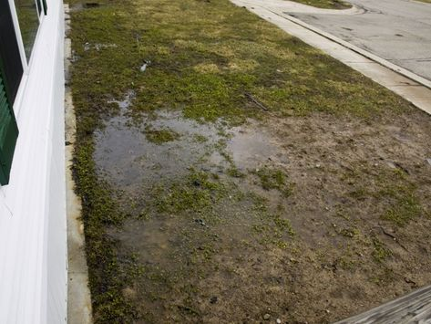 Yard Drainage – Basement Waterproofing Louisville, KY