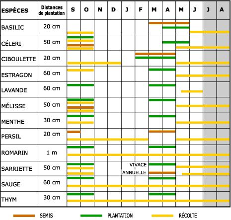 les 25 meilleures ides de la catgorie herbes aromatiques sur pinterest jardin dherbes jardin dintrieur dherbes aromatiques et herbes dintrieur - Planter Des Herbes Aromatiques En Jardiniere