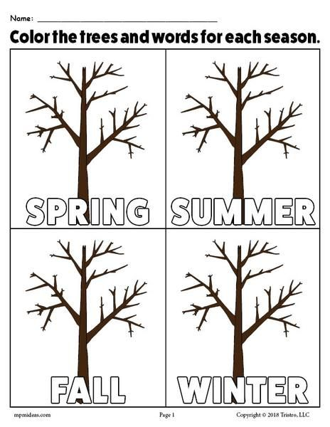 The 4 Seasons Printable Coloring Page Seasons Kindergarten