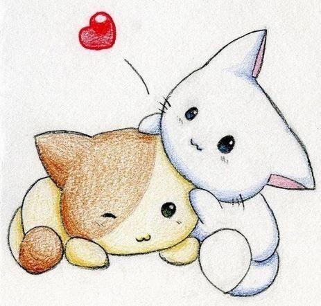 30 Gambar Kartun Orang Kedinginan 50 Gambar Kucing Lucu Dan Imut Sedunia Kucing Co Id Download 40 Foto Dan Gamba Di 2020 Gambar Kucing Lucu Kawaii Cara Menggambar