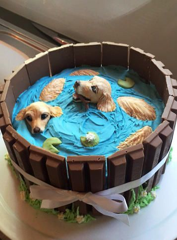 Golden Retriever Cake By Gamergirl84244 With Images Puppy