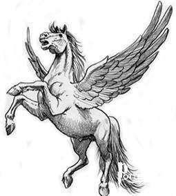 Pegaso Cavallo Alato Disegno.Cavallo Alato Harry Potter Potterpedia It Tatuaggio