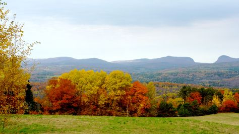 Vermont Fall Foliage Scenery From Mid Burke Mountain In The