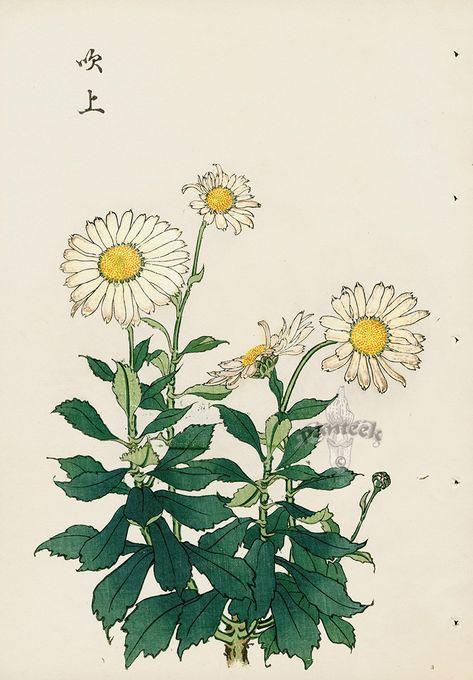 from Vintage Japanese Woodblock Prints