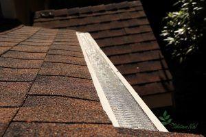 Gutter Guard Asphalt Shingle Roof Gutter Guard Gutters Gutter Protection