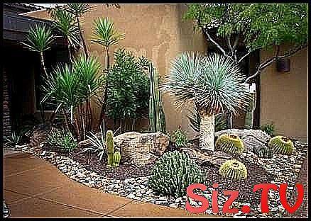 Gartenweg Diy Billig Asche Blocke 51 Ideen Gartenweg Diy Billig Asche Blocke Gartenweg Garten Garten Design