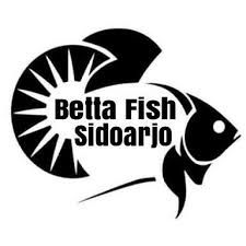 Betta Logo Design Google Search