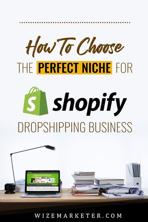 How to Chose the Perfect Niche for Shopify Dropshipping Business