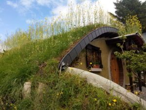 Leitrim Shire S Grass Roofed Hobbit House Hobbit House Grass Roof Luxury Glamping