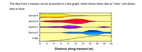 Transect can be represented as kite diagrams aqa a2 biology transect can be represented as kite diagrams aqa a2 biology unit 4 pinterest aqa ccuart Images