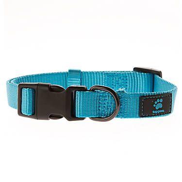 Top Paw Gunmetal Core Dog Collar Dog Collars Petsmart Dog Collars Leashes Personalized Dog Collars Dog Collar
