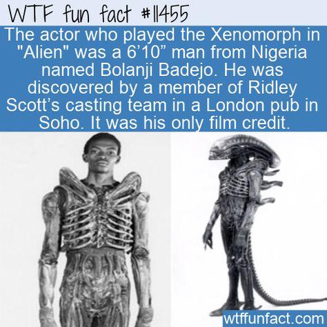 WTF Facts : funny, interesting  weird facts WTF Fun Fact - Bolanji Badejo #wtf #funfact #wtffunfact 11455 #Alien #BolanjiBadejo #funnyfacts #Movies #nigeria #People #randomfact #randomfacts #randomfunnyfact #wtffunfact #Xenomorph