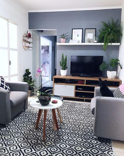 Samambaia: como cuidar, tipos e 70 ideias para decorar a sua casa