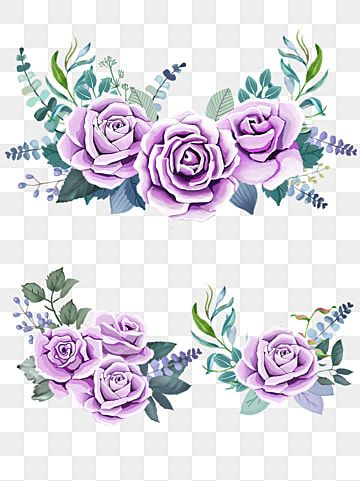 Purple Roses Watercolor Green Leaves Yellow Flowers Png Transparent Image And Clipart For Free Download Purple Flower Background Floral Poster Flower Clipart