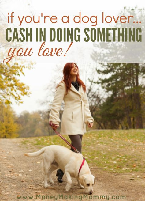 Love the outdoors? Love exercise? Adore dogs? This is the perfect home business start up for you! | MoneyMakingMommy.com
