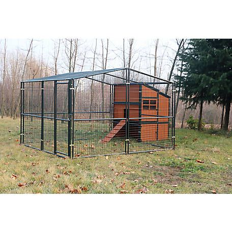 Producer S Pride Defender Chicken Coop 2020 1168239n At Tractor Supply Co In 2020 Chickens Backyard Chicken Coop Tractor Supplies
