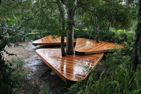 Spotted Gum Decks Built Around An Existing Tree At A Local School On The Gold Coast These Timber Decks Provide A Deck Around Trees Timber Deck Building A Deck