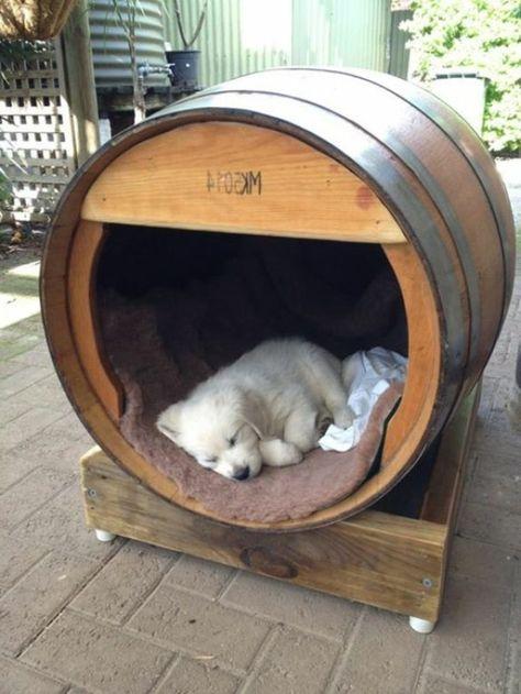 cuve fabriquer niche de chien original