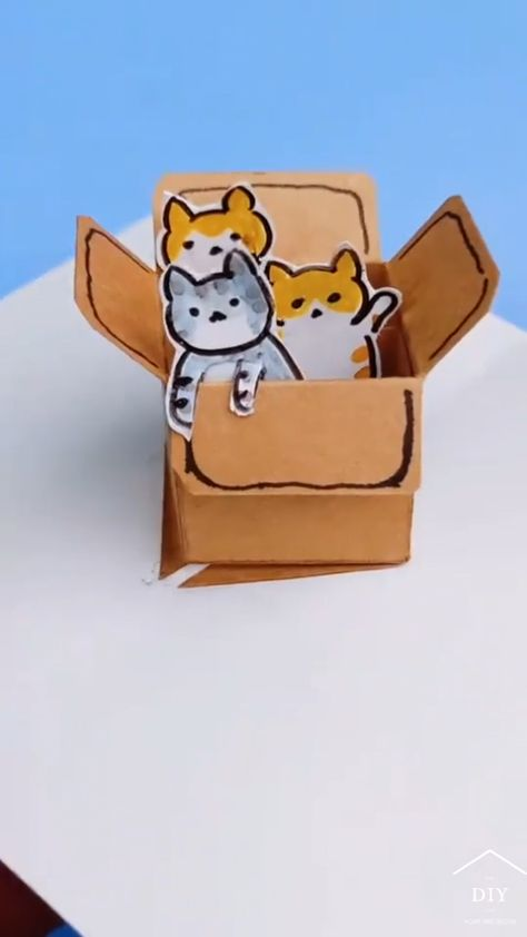 DIY 3D cat box is in the greeting card.