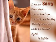 I Am So Sorry Lets Be Friends Again Friends Quotes Apologizing Quotes Sorry Quotes