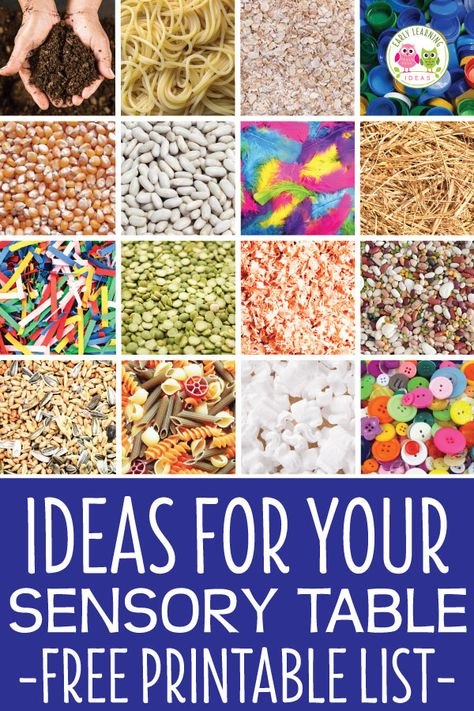 The Sensory Table Materials List That Will Make Your Life Easier