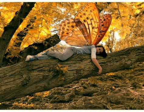 io fata / fairy