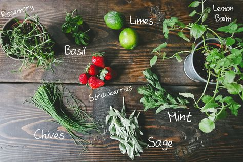 What to grow in your own cocktail garden