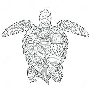 Unsurpassed Green Sea Turtle Coloring Pages Page Realistic Wagashiya Milwaukeepaindoctors Turtle Coloring Pages Turtle Drawing Antistress Coloring
